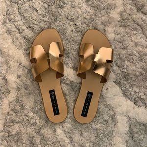 Shoes - Steve Madden flip flops